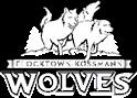 flocktown wolves school logo design